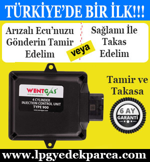 Wentgas MP48 Ecu Tamiri